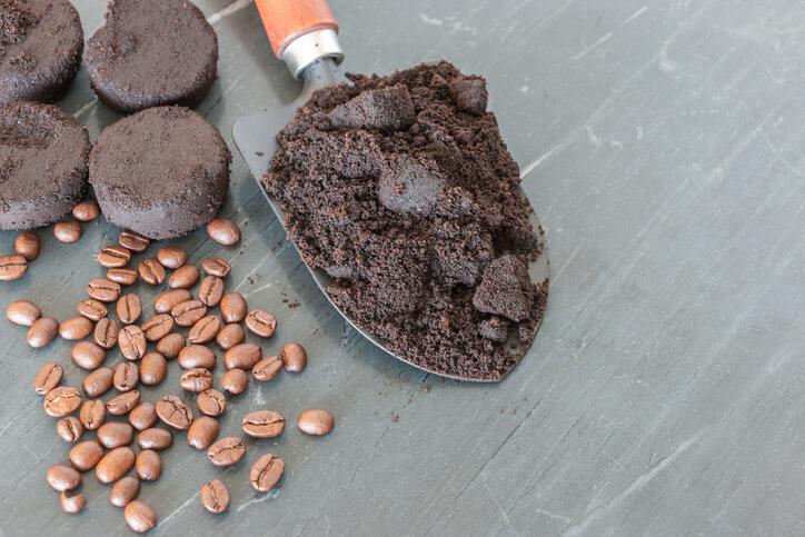 Vorteile von Kaffeesatz als Düngemittel