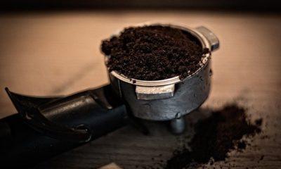 Kaffeesatz gegen Katzen und Schnecken im Garten