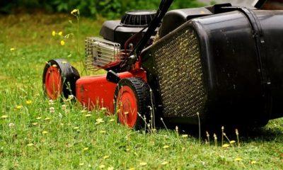 Welche Ruhezeiten Sie beim Rasenmähen beachten müssen
