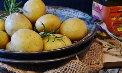 Kartoffeln dämpfen - Ratgeber