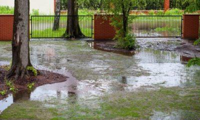 Regenwasserversickerung im Garten