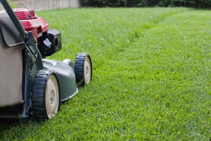 Anleitung 2 Rasen mit der Rollrasen-Methode neu anlegen